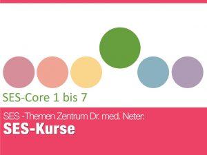 151110_ses_ses-core1bis7-1024x768