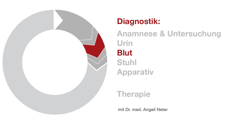 Überblick Diagnostik - Blutuntersuchung, Dr. med. A. Neter