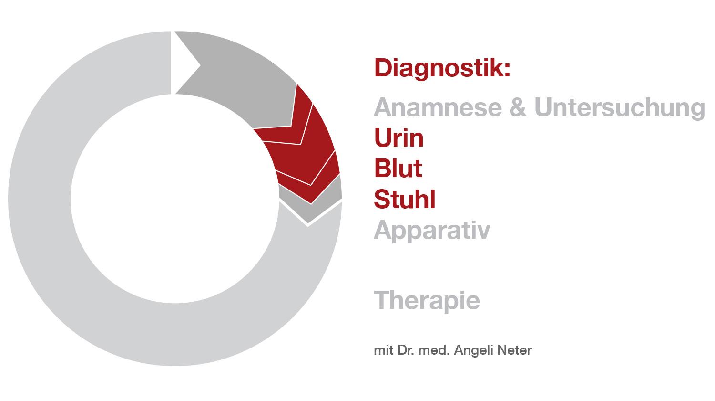 Überblick Diagnostik - Labor, Dr. med. A. Neter