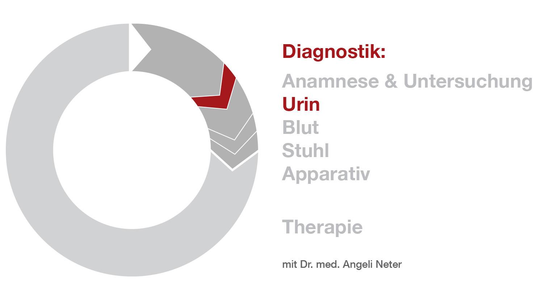 Überblick Diagnostik - Urinuntersuchug, Dr. med. A. Neter
