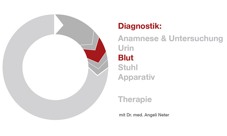 Diagnostik Blutuntersuchung - Dr. med. A. Neter