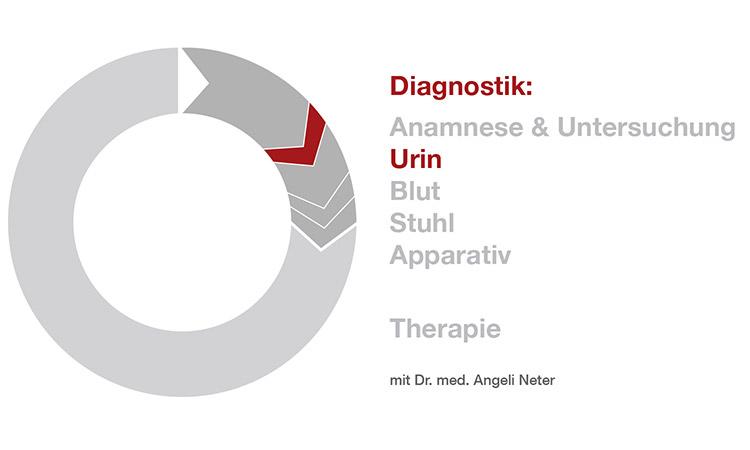 Diagnostik Urinuntersuchung - Dr. med. A. Neter